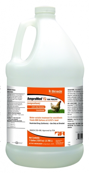 AmproMed P 1 gallon