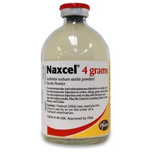 Naxcell 4 gram | Best Vet Solutions